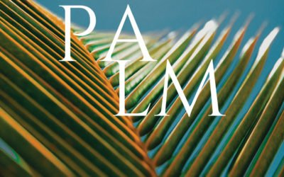 Palm Sunday – The Triumphant Entry